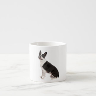 Boston Terrier dog beautiful photo gift Espresso Cup