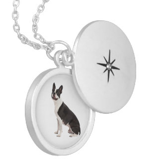 Boston Terrier dog beautiful photo locket, gift Locket Necklace