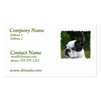 Boston Terrier Dog Business Card