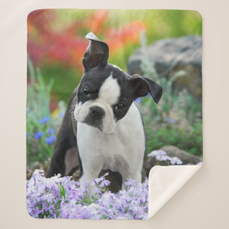 Boston Terrier Dog Cute Puppy Animal Head Photo .. Sherpa Blanket