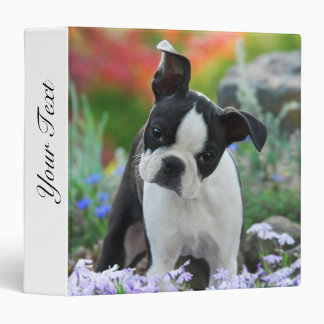 Boston Terrier Dog Cute Puppy Animal Head Photo __ Vinyl Binder
