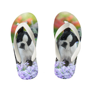 Boston Terrier Dog Cute Puppy Animal Photo - Kids Kid's Flip Flops