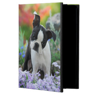 Boston Terrier Dog Cute Puppy, hardcase Powis iPad Air 2 Case