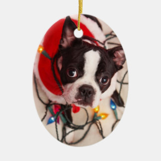 Boston Terrier Dog in Twinkling Lights Ornament