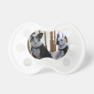 Boston Terrier dog Pacifier