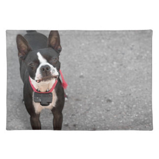 Boston Terrier Dog Placemat
