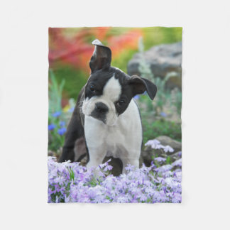 Boston Terrier Dog Puppy comfy Fleece Blanket