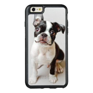 Boston Terrier dog puppy. OtterBox iPhone 6/6s Plus Case