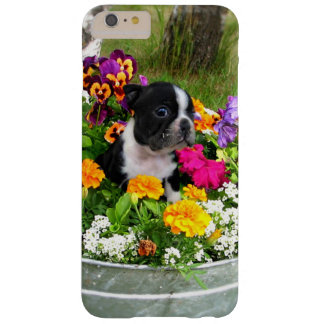Boston Terrier dogs iphone 6 plus case