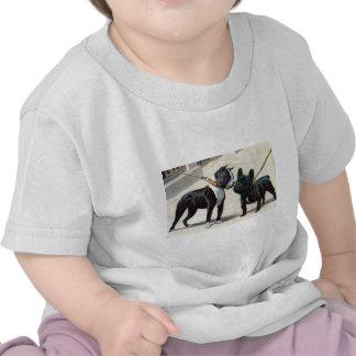 Boston Terrier  & French Bulldog T Shirts