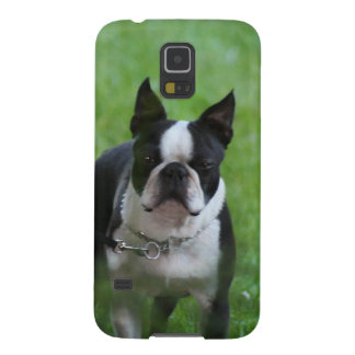 Boston Terrier Galaxy S5 Cover