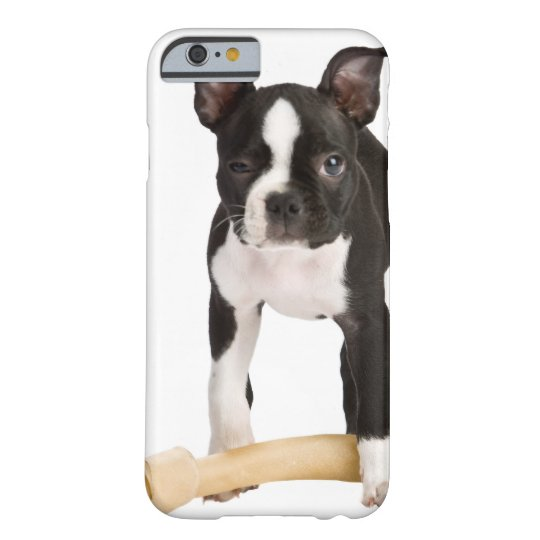 Boston terrier guarding twisty bone barely there iPhone 6 case