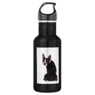 Boston Terrier Liberty 532 Ml Water Bottle