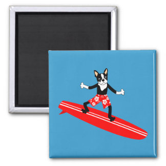 Boston Terrier Longboard Surfer Magnet