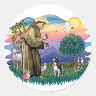 Boston Terrier ((looking up) Round Sticker