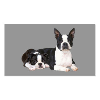 Boston Terrier Lover Business Card