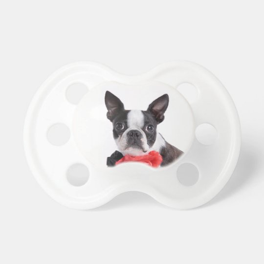 Boston Terrier Mollie mouse child Baby Pacifiers
