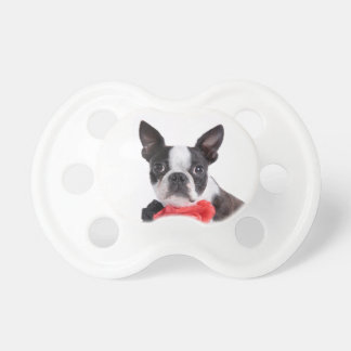 Boston Terrier Mollie mouse child Pacifier