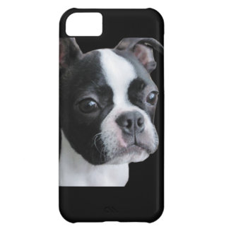 Boston Terrier: More than my share of cuteness Cover For iPhone 5C