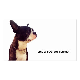 Boston Terrier Pack Of Standard Business Cards
