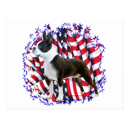 Boston Terrier Patriot Postcard