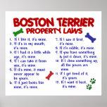 BOSTON TERRIER PL2