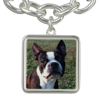 Boston_Terrier.png Bracelets