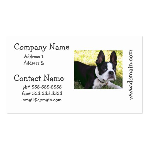Boston Terrier Pup Business Cards