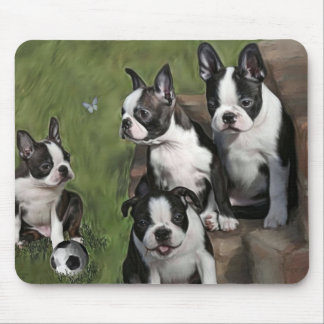 Boston Terrier Puppies Mouse Pad