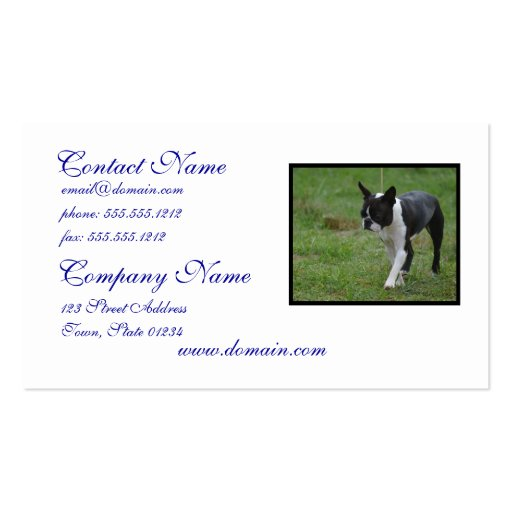 Boston Terrier Puppy Business Card Template