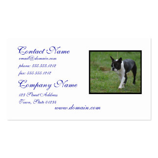 Boston Terrier Puppy Pack Of Standard Business Cards