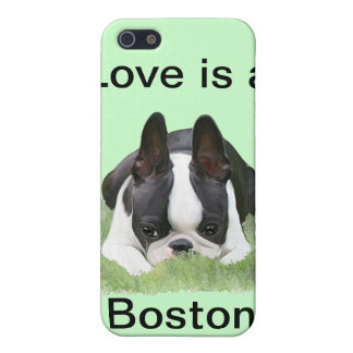 Boston terrier puppy resting iPhone 5 cover