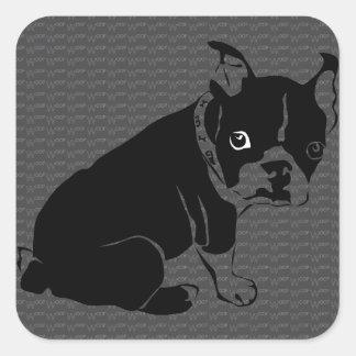 Boston Terrier puppy Woof Square Sticker