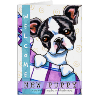 Boston Terrier Welcome New Puppy Card