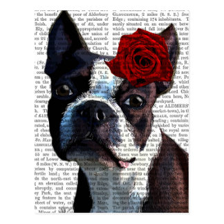 Boston Terrier with Rose on Head Postcard