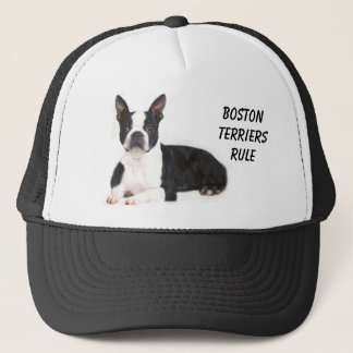 Boston Terriers Rule Hat