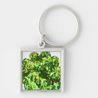 Boston USA America  Green Nature Photography Silver-Colored Square Keychain