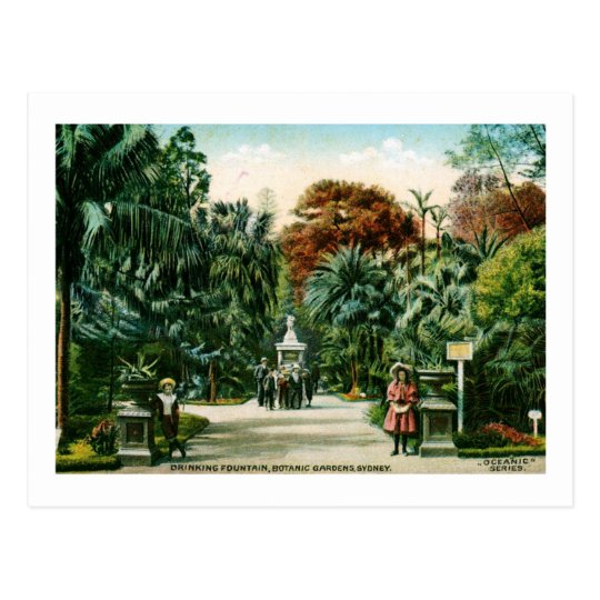 Botanic Gardens, Sydney, Australia Vintage Postcard