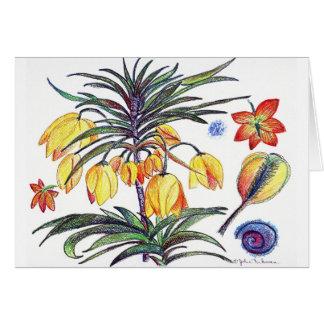 botanical44 card