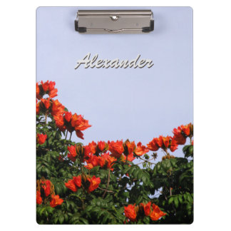 Botanical African Tulip Tree any Text Clipboards