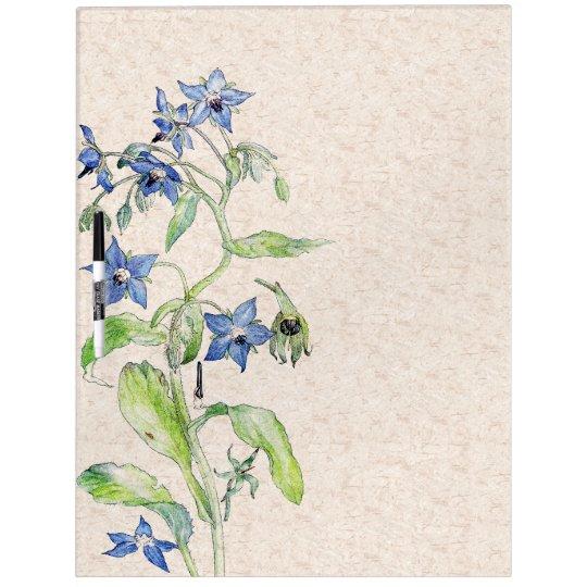 Botanical Borage Flowers Dry Erase Board