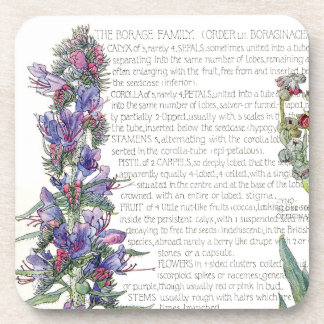 Botanical Borage Herbs Flowers Coaster