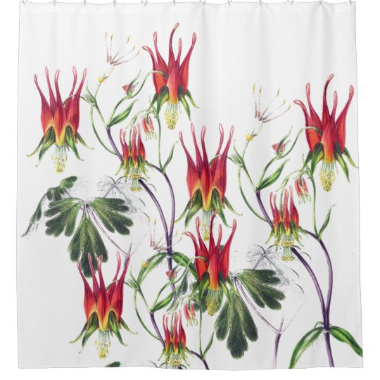 Botanical Collage Columbine Flowers Shower Curtain