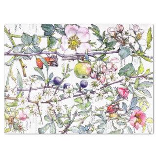 Botanical Crab Apple Flowers Blossoms Tissue Paper