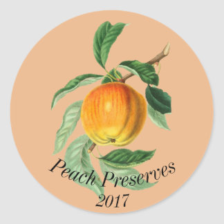 Botanical Fruit Peach Classic Round Sticker