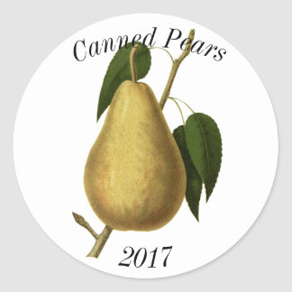 Botanical Fruit Pear Classic Round Sticker