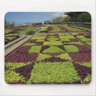 Botanical Gardens, Funchal, Madeira Islands, Mouse Pad