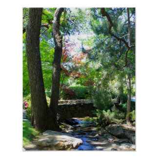 Botanical Gardens, Stream, Footbridge Poster