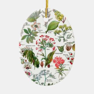 Botanical Illustrations Ceramic Oval Ornament