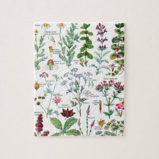 Botanical Illustrations Jigsaw Puzzle